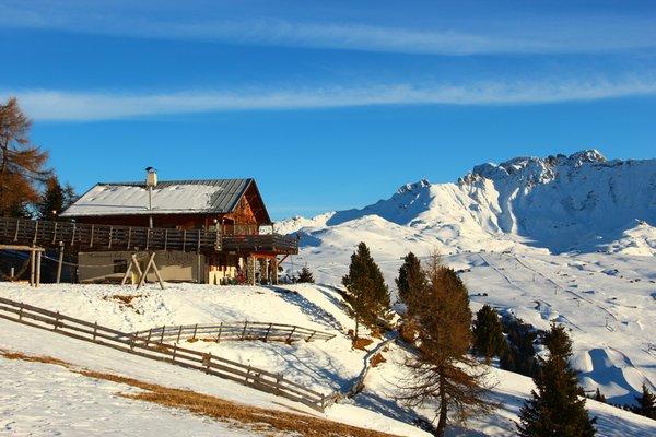 Foto esterno in inverno Dibaita Puflatschhütte