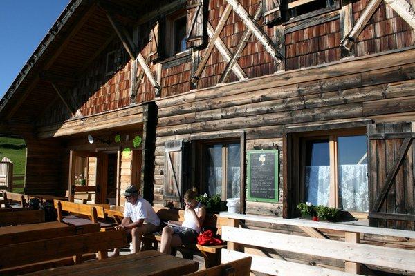 Foto estiva di presentazione Dibaita Puflatschhütte - Rifugio