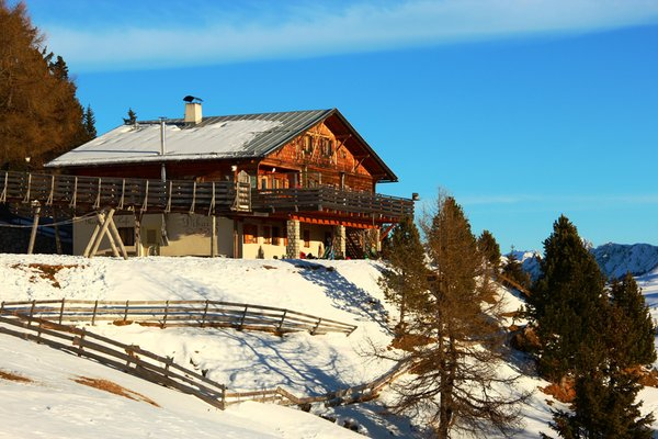 Foto invernale di presentazione Dibaita Puflatschhütte - Rifugio