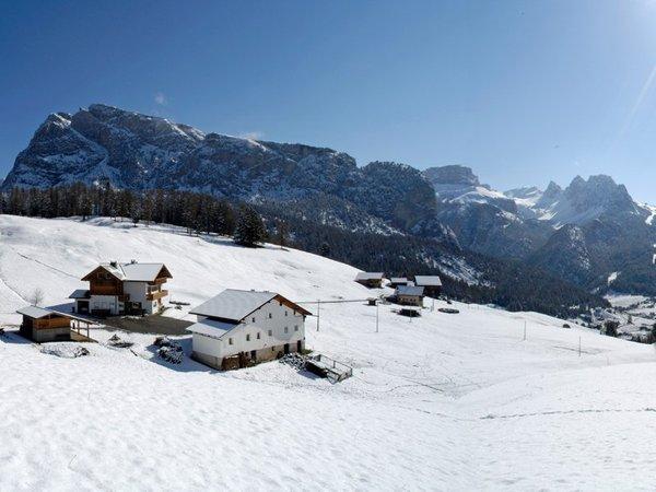 Winter Präsentationsbild B&B + Ferienwohnungen auf dem Bauernhof Tubla