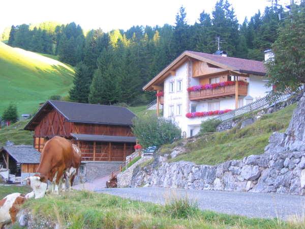 Foto esterno Appartamenti in agriturismo Neuhaus