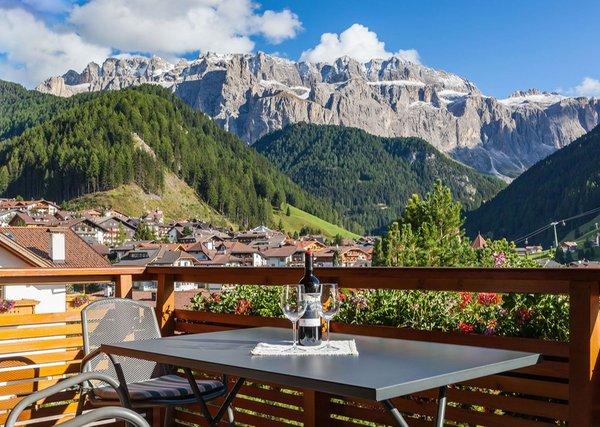 Foto vom Balkon Stevia