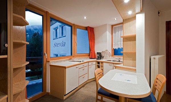 Foto der Küche Stevia