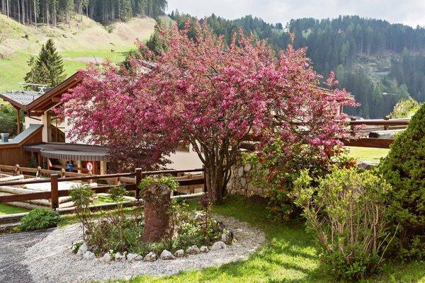 Foto del giardino Selva Gardena