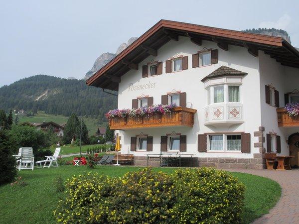 Foto estiva di presentazione Appartamento Pössnecker