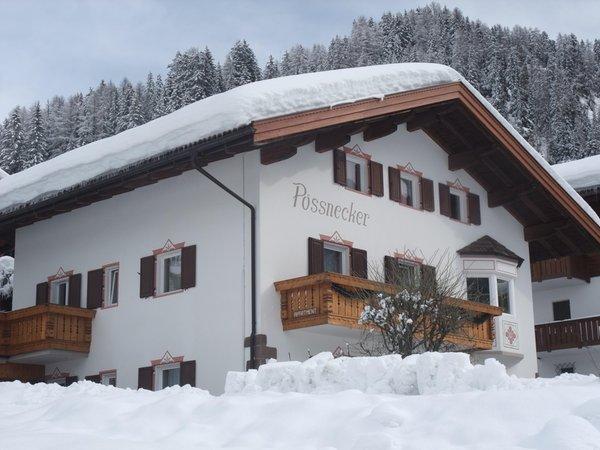 Foto invernale di presentazione Appartamento Pössnecker