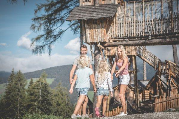 Photo gallery Alta Pusteria / Hochpustertal summer