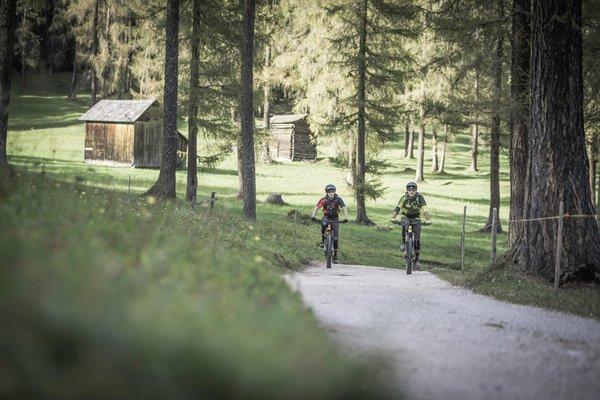Summer activities Alta Pusteria / Hochpustertal