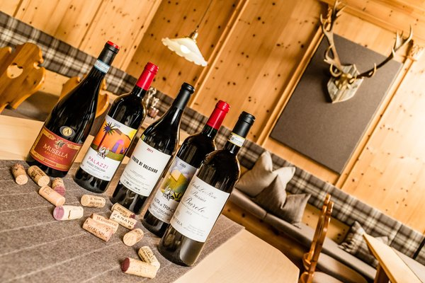 La cantina dei vini Santa Cristina Touring Dolomites