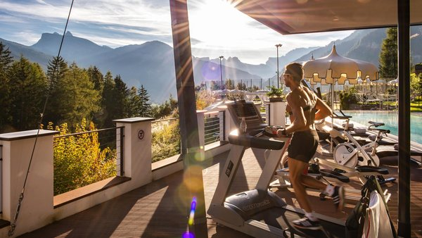 Foto della zona fitness Hotel Albion Mountain Spa Resort Dolomites