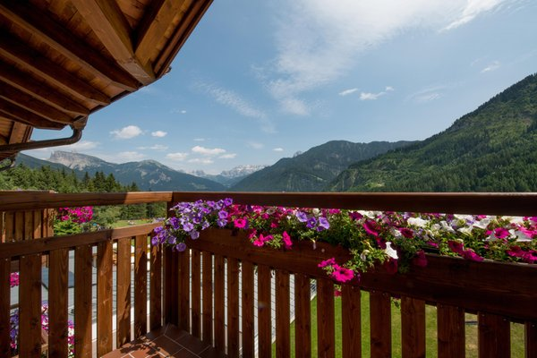 Foto del balcone Pinei Nature & Spirit