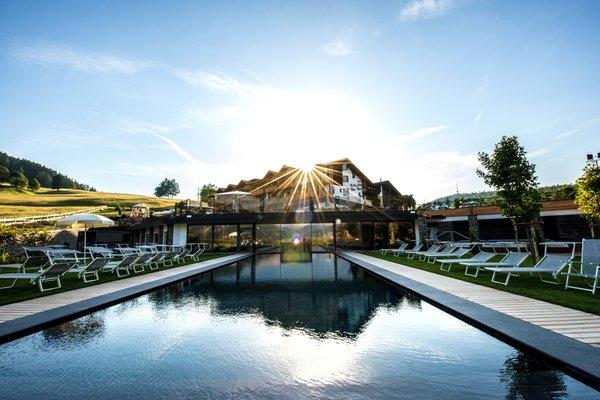 Foto estiva di presentazione Hotel Pinei Nature & Spirit