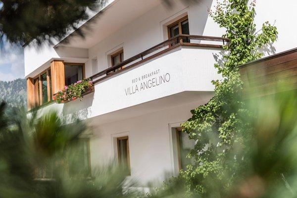 Foto esterno in estate B&B Villa Angelino