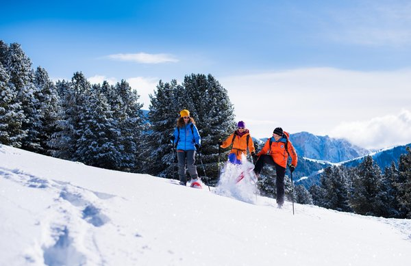 Attività invernali Val Gardena