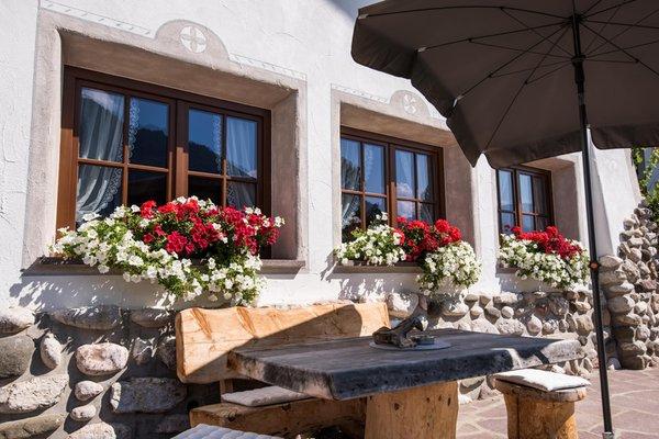 Photo exteriors in summer Christa
