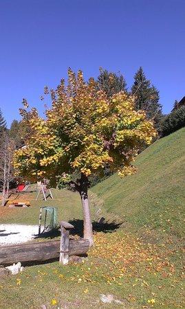 Foto vom Garten St. Ulrich