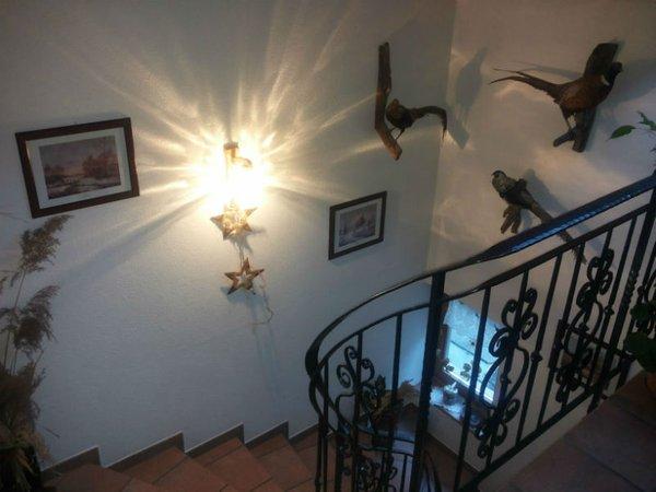 Foto dell'appartamento Cesa Sara