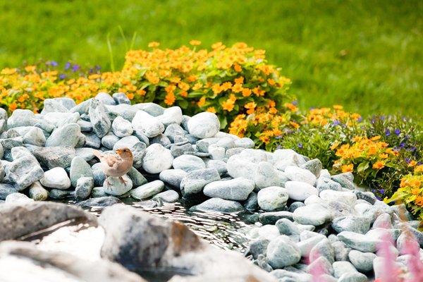 Foto vom Garten Corvara