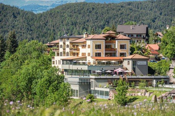 Foto Außenansicht im Sommer Alpenflora