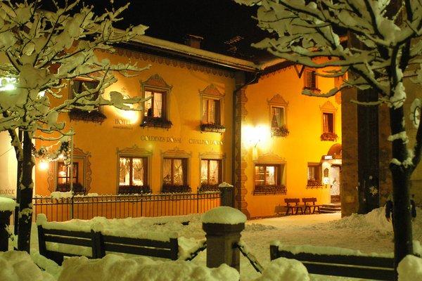 Foto invernale di presentazione B&B-Hotel Cavallino D'Oro