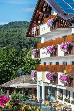 Foto esterno in estate Alpenroyal