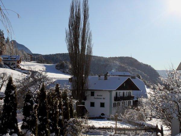 Foto esterno in inverno Gasthof Zu Tschötsch