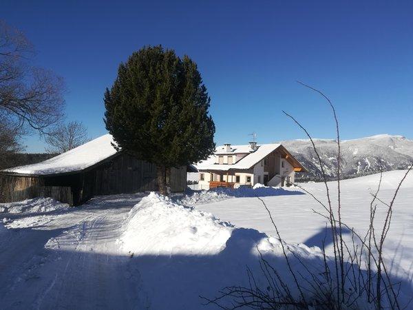 Foto esterno in inverno Villa Schönau