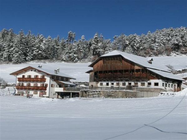 Foto Außenansicht im Winter Feger