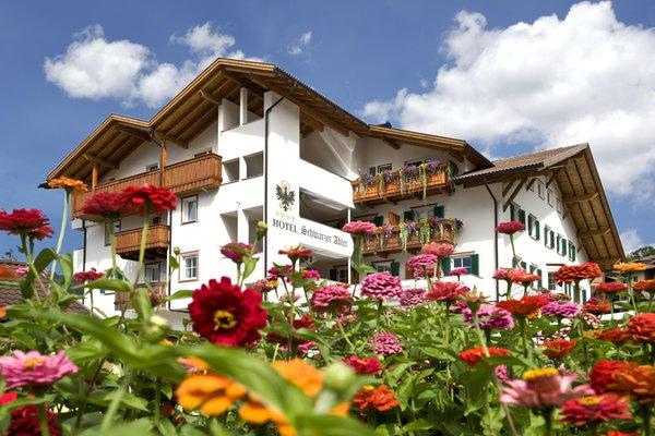 Foto estiva di presentazione Schwarzer Adler - Hotel 4 stelle