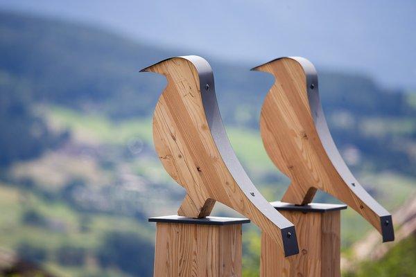 Foto di alcuni dettagli Sonus Alpis