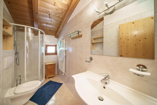 Foto del bagno Appartamenti in agriturismo Pristinger Hof