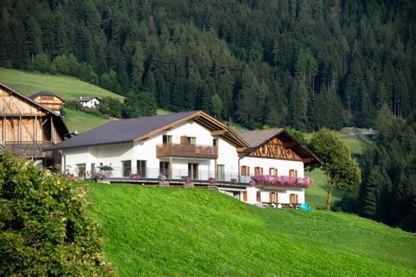Sommer Präsentationsbild Kamaunhof - Zimmer + Ferienwohnungen auf dem Bauernhof 2 Blumen