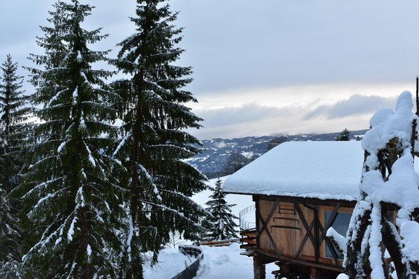 Photo exteriors in winter Bergmyrthe