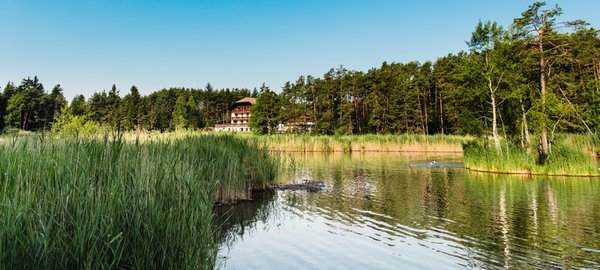 La posizione Hotel Waldsee Fiè allo Sciliar