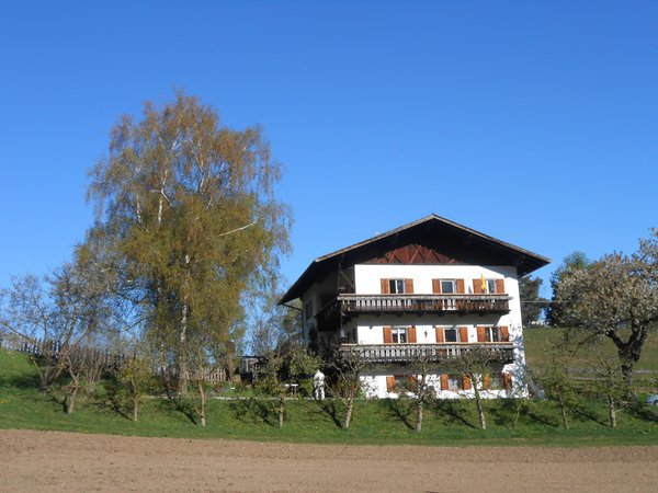 Sommer Präsentationsbild Bed & Breakfast Haus Mair