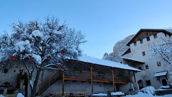 Foto invernale di presentazione Appartamenti in agriturismo Edelansitz Zimmerlehen