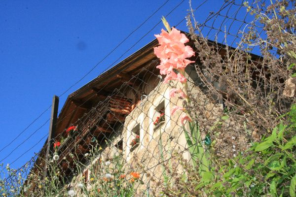 Foto von der Außenansicht Ferienwohnungen auf dem Bauernhof Fronthof