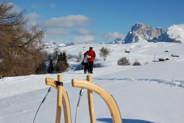 Attività invernali Alpe di Siusi