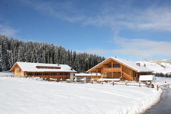 Foto esterno in inverno Tirler – Dolomites Living Hotel