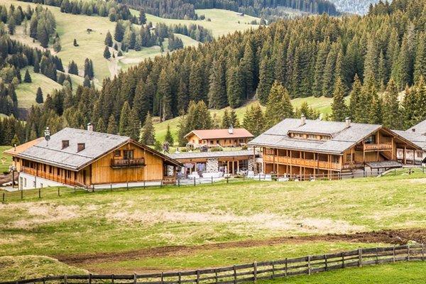 Foto estiva di presentazione Tirler – Dolomites Living Hotel - Hotel 4 stelle sup.