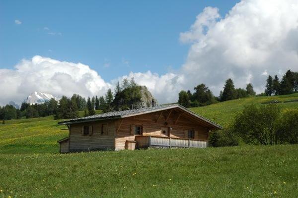 Foto estiva di presentazione Casa vacanze Chalet Seiseralm