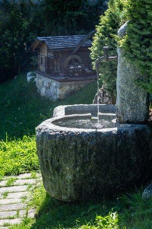 Photo of the garden Corvara