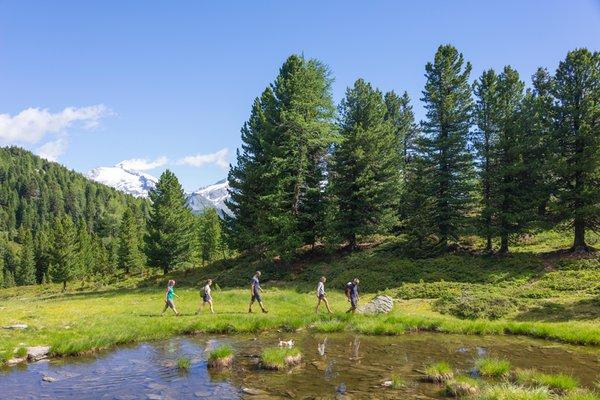 Summer activities Tauferer Ahrntal