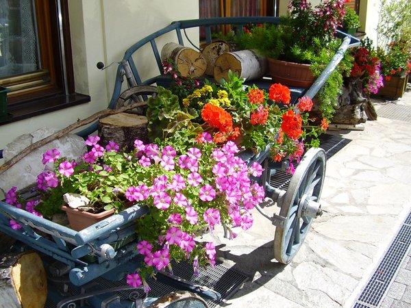 Foto del giardino Molini di Tures