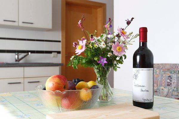 Forer Egitz - Appartamenti in agriturismo 2 fiori Molini di Tures