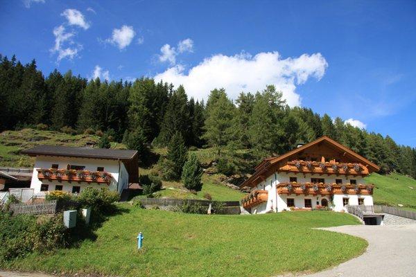 Sommer Präsentationsbild Niederuntererhof - Ferienwohnungen auf dem Bauernhof 3 Blumen