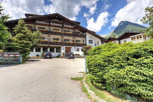 Summer presentation photo Schwarzbachhof - B&B (Garni)-Hotel 3 stars