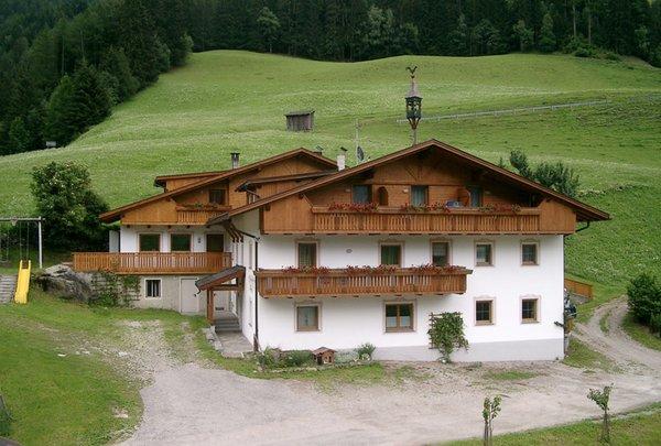 Summer presentation photo Großarzbachhof - Rooms + Apartments in farmhouse 3 flowers