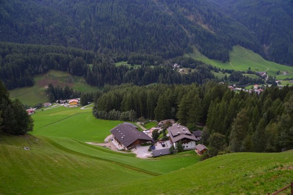 La posizione Appartamenti in agriturismo Winklerhof San Pietro (Valle Aurina)