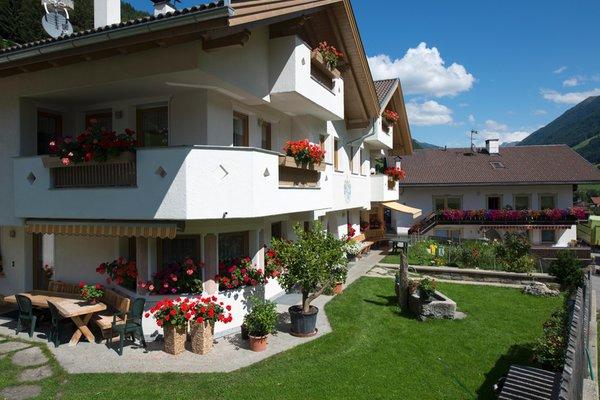 Foto esterno in estate XL-Appartements Steinhaus